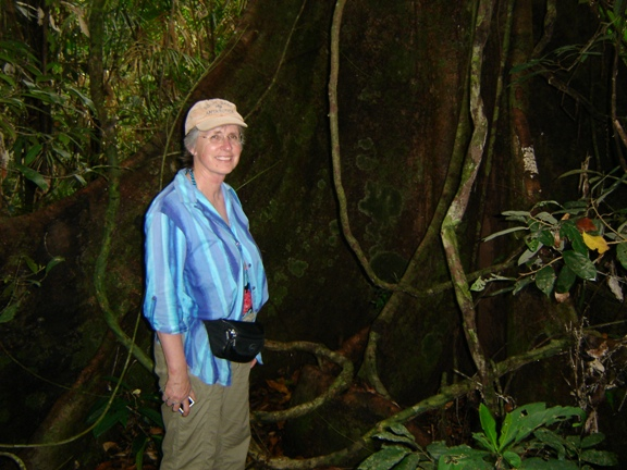 Alison & buttress roots.JPG