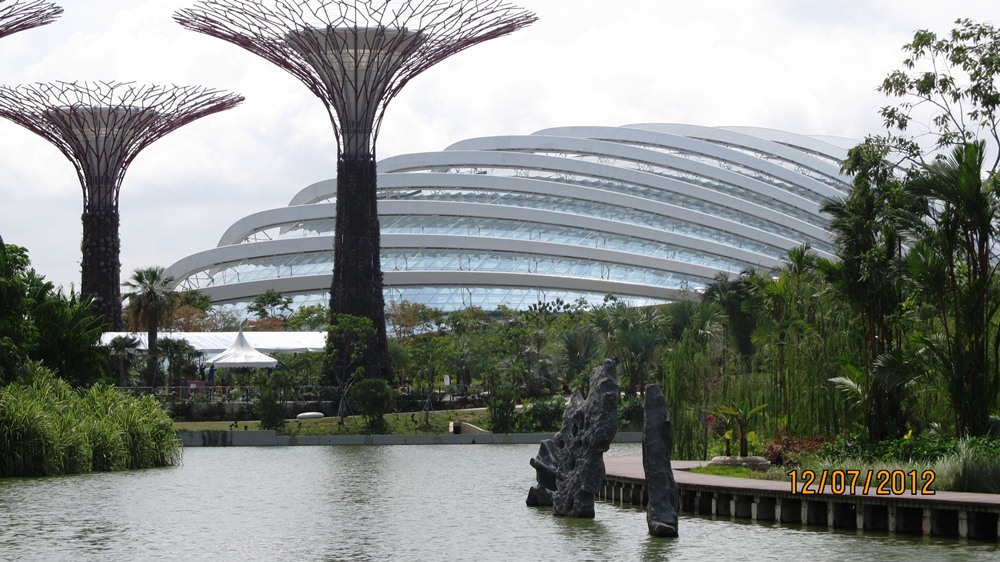 singapore supertrees & dome.jpg
