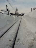 Snow1 2012. qima.JPG